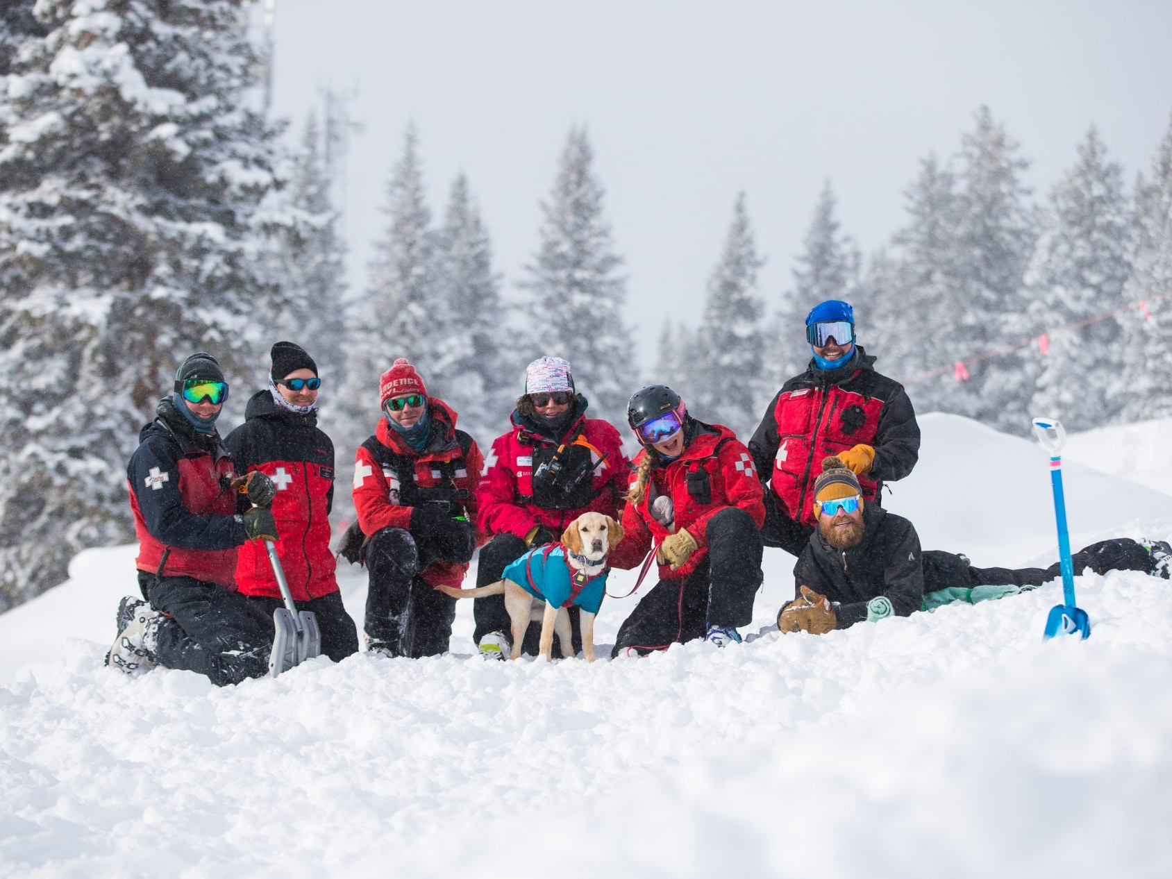 Dog handler group with avalanche puppy in training