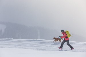 Avalanche dog plus handler walking together in the snow